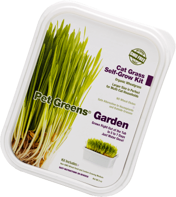 Cat grass self-grow kit container by Tech 2